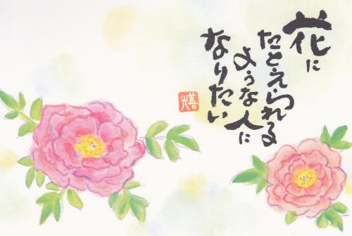 21.1:500:336:0:0:2012124:center:1:1:ボタンの花:0: