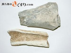 Image 竜骨
